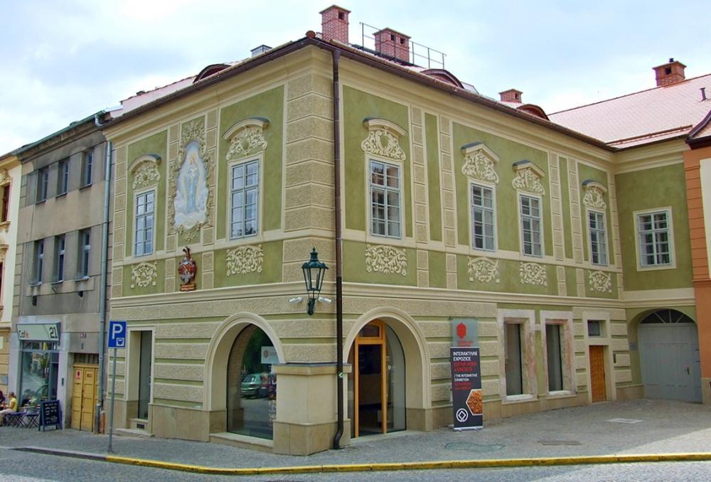 Dacicky house